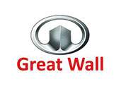 tapis great wall